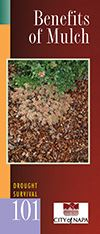 Drought Survival Guide - Benefits of Mulch