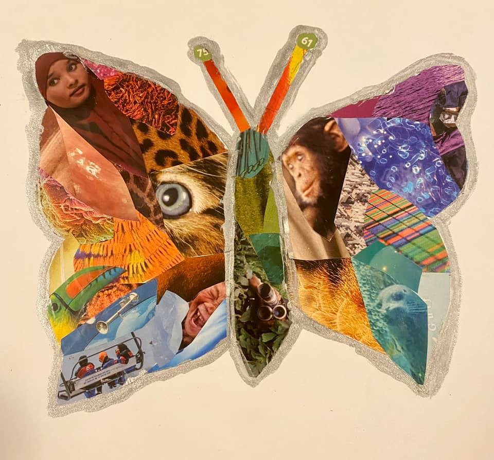 A photo of a collage made in the shape of a butterfly.