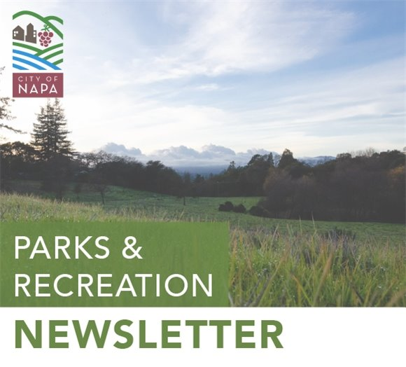 Parks and Recreation Newsletter